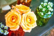 MyFlowers / Flowers