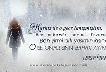 Kara Kış Beyaz Düş/ Fatma Erdek / Fatma Erdek'in Kara Kış Beyaz Düş kitabı için tur çalışmaları içerir.