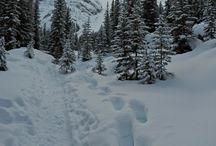 British Columbia, Canada Travel