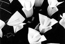Nuns and Women Religious