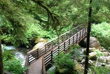 Seattleish Hikes / My favorite hikes with a couple hours drive of Seattle