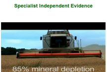 Importance of Plant Derived Minerals