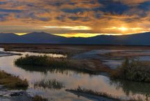 Bear River Migratory Bird Refuge / Bear River Migratory Bird Refuge, Brigham City, Utah.