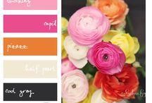 S. palette/colourfull