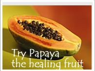 Papaya Misc / by Herbal Papaya