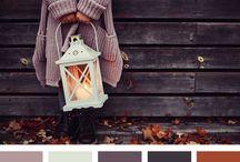 my autum colours