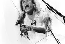 Steven Tyler / by Brooke Hanna-Santalucia
