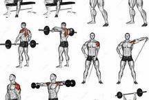 Gym - shoulders