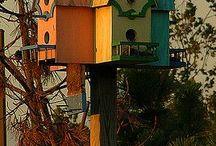 nichoirs oiseaux