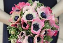 WEDDINGS - Beautiful Bouquets / by Miranda Fleming