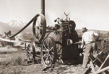 Swiss Steam
