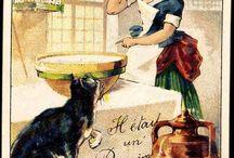 Kissatuotteet / Catproducts