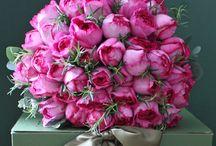λουλούδια ποιήματα