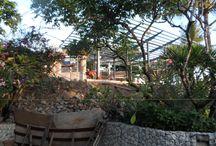 IJLA / Equatorial Design - Padma Hotel, Legian, Bali / Landscape Architecture