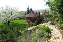 kertápolás / kertek szükség szerinti gondozása, fenntartása