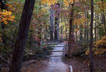 Run/Walk in Newport News, VA
