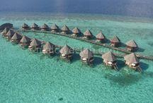 Angaga Resort / Sakinlik, muhteşem doğa güzelliği, son derece geleneklere bağlı bir hizmet arzu ediyorsanız eğer Angaga sizi fazlasıyla memnun edecektir. Lüks aramayan misafirler için uygun olan bu minik ada Maldivler balayı, Maldivler turu ve romantizm arayan çiftler için uygun olabilir. Tesis hakkında daha detaylı bilgi için; http://www.maldiveclub.com/maldivler-otelleri/angaga-resort