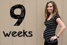 Green Pregnancy Tips / Check out my weekly pregnancy updates as well as my favorite healthy pregnancy tips.