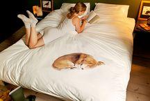 Heut' bleib ich im Bett!