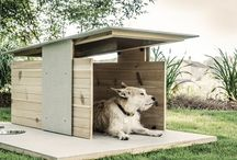 Pet Style / by House & Home