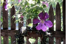 Garden & Outdoor Spaces / by Angela @ Cottage Magpie