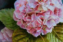 Watercolor Flower Paintings - Flowers in watercolor / I love to paint flowers in watercolor ...