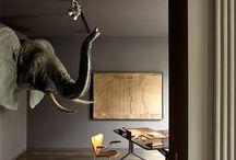Grey Elephant ☿