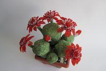 Бисер кактусы