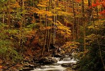 Smoky Mountains / by Gale Burris