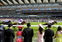 Off To The Races / Get in the mood for a trip to the Races, and sunny days out at Royal Ascot or Windsor in the UK, USAs Kentucky Derby or the Prix de L'Arc de Triomphe - racing's most prestigious event. Get style inspiration and finish your look off with one of our selection of event hats http://bit.ly/1Kw8QNA  / by Boticca