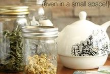 herbs in small spaces