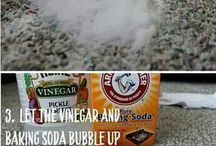 Vinegar to clean catpets