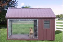 Dog house and equipment