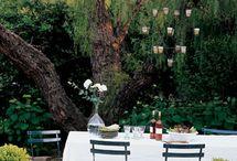 Garden  Ideas / by Lisa Wilham-Pepper
