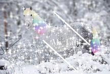 Horses / Horses makes life more beatiful