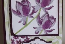 Lotus Blossom Cards