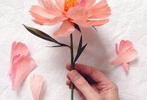 Papírvirágok / Paper flowers