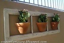 janelas decorativas