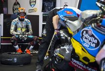 Moto2 Championship / Our riders in the 2015 Moto2 Championship