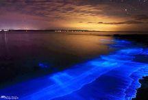 Bio-luminescence from Plankton...