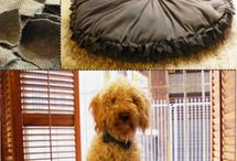 Doggy beds / by Tori Highley