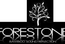 Forestone Saxophones and Reeds / Dedicated to all things Forestone who I endorse as a professional Saxophonist. Based in Osaka, Japan and led by Lars Heuseler and ably assisted by Joan Sola and the team.