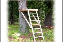 Step ladder platform