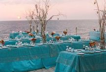 Beach Weddings / A beautiful day at the wedding