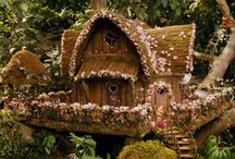 Tony house