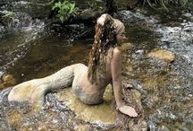 Mermaids / Anything to do with Mermaids!