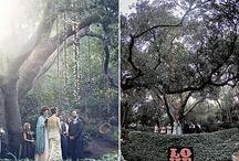 Woodland Ceremony - Decor