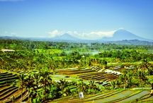 Dovolená Bali / Dovolená na Bali, zájezdy na Bali