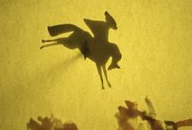 Filipok - teatru de umbre ambulant / Spectacole de umbre. Shadow theatre.