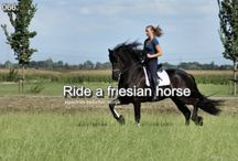 Bucket List for Horse Riding  Equestrians / Horseback Riding Around the World, Horse Training in Spain, Horse Fare Andelucia, Horse Vacations, Dude Ranch, Horseback Riding Nepal, Polo in Barbados.Gallop on the Beach, Hunt Riding England, Horse Riding in the Sea, Horse Parade Costa Rica.Horse Trek, Cattle Drive, Montana Trail Riding, Horseback Riding Thailand,